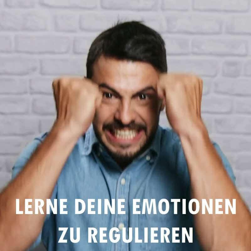 Meine 10 Erfolgsregeln - Regel 4: Lerne Deine Emotionen zu regulieren