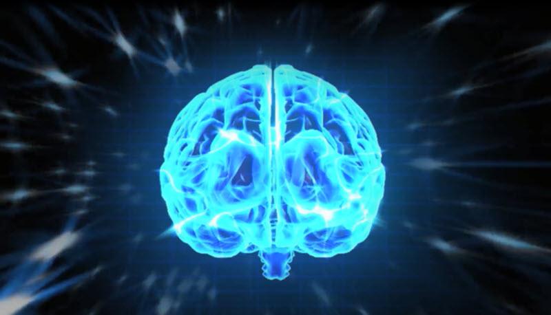 Mentale Stärke durch Mentalcoaching - Bild Gehirn